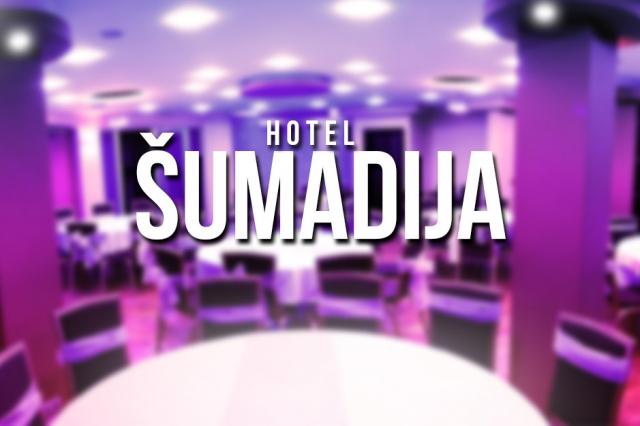 Hotel Šumadija Nova godina